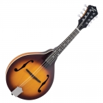 Recording King A-style mandolin, Tobacco Burst